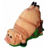 Свинка на пне